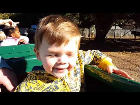 Griffith Park Rides