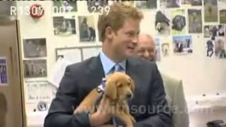 Harry Visits Canine Partners National Training Centre In West Sussex