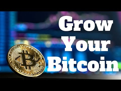 Easy Way To Grow Your Bitcoin Holdings By Trading 2019