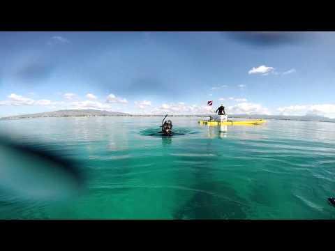 Ewa Beach Diving