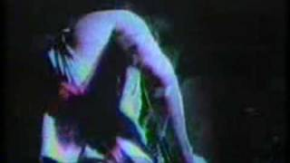 Watch Meat Puppets In Love video
