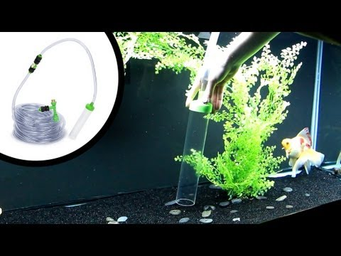 How to clean sand aquarium substrate youtube for Best way to clean a fish tank
