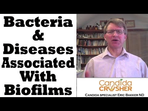 Examples Of Bacteria And Diseases Associated With Biofilm Development
