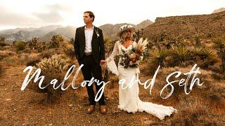 Cinematic Wedding Video   Snowy Joshua Tree Elopement Film   Panasonic GH5 & Phantom 4