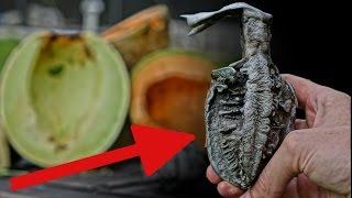 Aluminum Vs  Melons = Hand Grenade?!