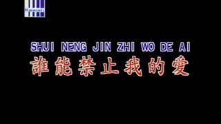 Shui Neng Jin Zhi Wo De Ai