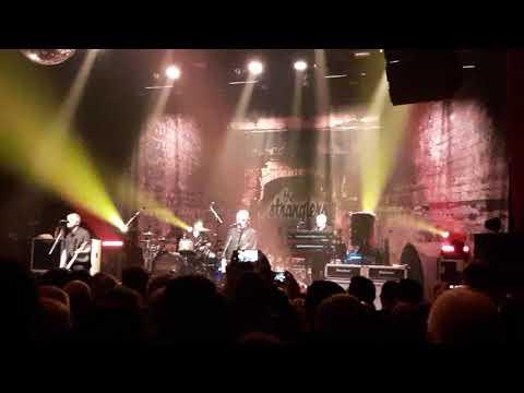 The Stranglers - Always the sun (live 28 nov 2019 Strasbourg)