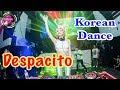 Despacito Remix DJ Soda Remix 2017 | Nonstop Korean DJ Mix