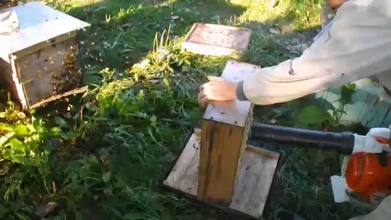 Оборудование для перевозки и ускоренной погрузки пчёл на медосбор .