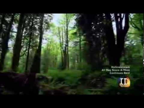 Download The Green River Killer - Full Documentary