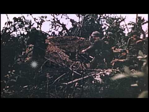 US Marines and tanks advance in Guam, Mariana Islands during World War II. HD Stock Footage