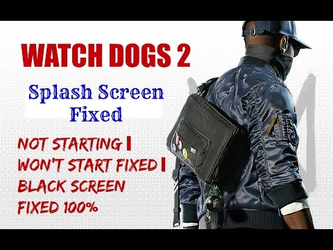 Watch Dogs  Cpy Not Starting