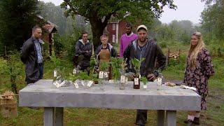Alexandra Louthander och Robert Lundström gör upp i kunskap - Farmen (TV4)