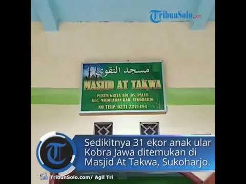 MASJID AT TAKWA