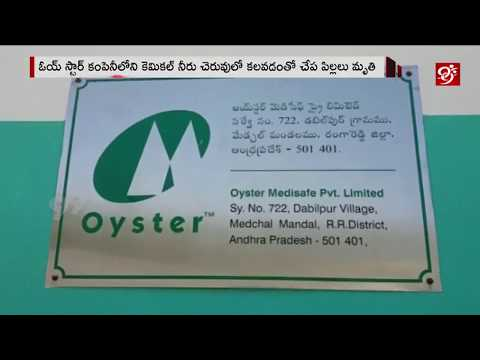 Fishes Dies Due to Oyster Company Chemical Effect In Lake | Medchal Dist |