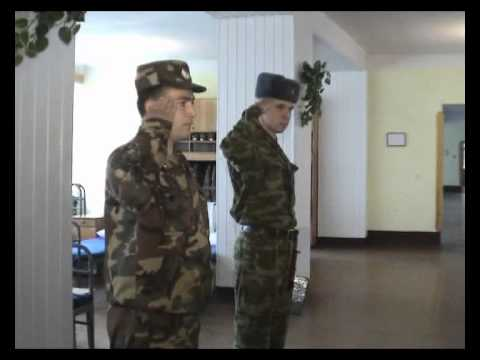 Видео осмотр солдат фото 450-498