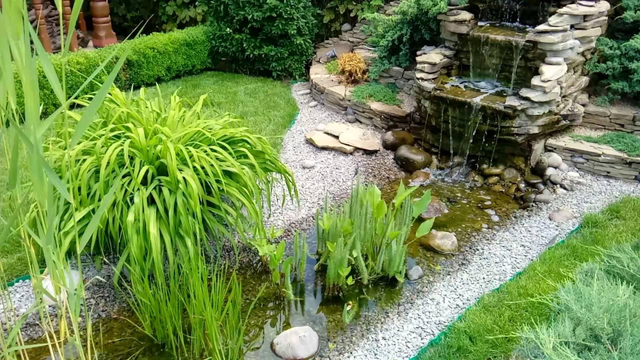 Проверено, прозрачная вода в садовом пруду, реальность!