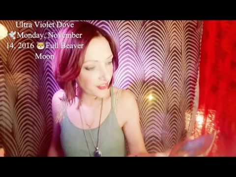 14 November 2016 MONDAY Super Full Beaver Moon🎼SPIRITUAL CHEMISTRY 📷Extended psychic tarot oracle