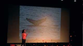The End of the World and the Beginning of Everything: Selin Jessa at TEDxKids@BC