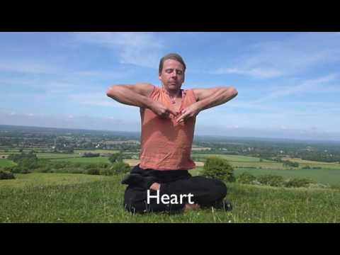 Organ Cleanse with Breath & Sound