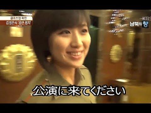 韓.「モランボン楽団の5年間を振り返る 2017.8」 日本語字幕