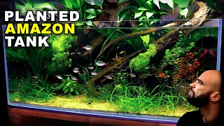 Aquascape Tutorial: EPIC 4ft Amazon Aquarium / Planted Tank (how to guide | NO co2 | diy lighting)