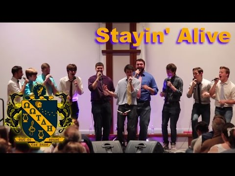 Stayin' Alive - Bee Gees (a cappella cover)