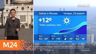 """""""Утро"""": повышенное атмосферное давление ожидается в столице 25 апреля - Москва 24"""