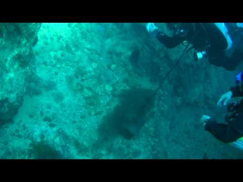 Boyle's Law Diving Science  #1