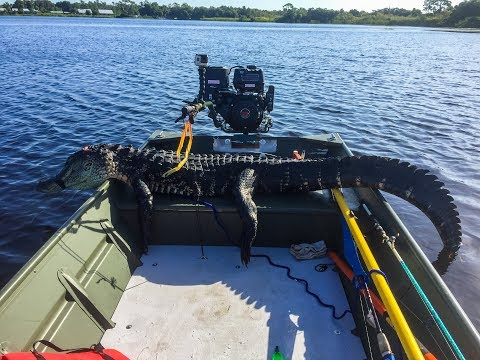 Solo Alligator Hunt In A Jon Boat 2018 Opening Day