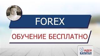 Заработать деньги - лучший брокер! Forex обучение для начинающих!