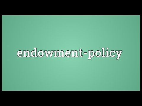 Endowment-policy Meaning