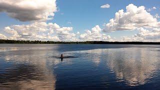 Нескучный ОТДЫХ на ВОЛГЕ: плаваем, гуляем и печём блины на костре