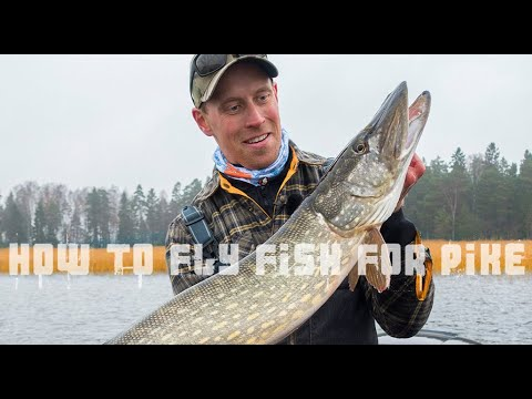 How To Fly Fish For Pike