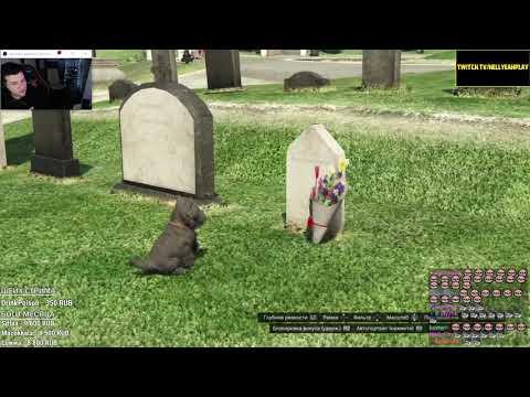 Hellyeahplay смотрит: Топ 7 ГРУСТНЫХ ПАСХАЛОК в играх (S.T.A.L.K.E.R. , GTA V , Half-Life 2 и др.)