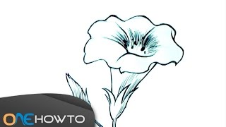 How to Draw a Flower - Speed Drawing