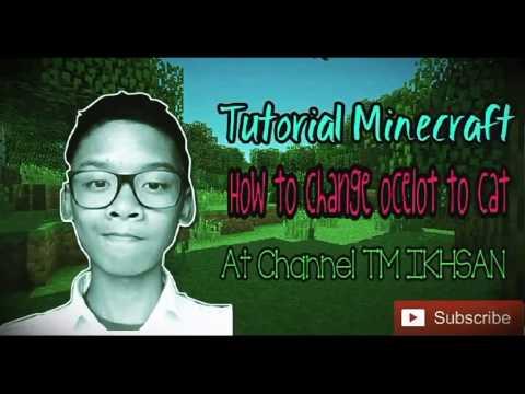 How To Change ocelot to cat in Minecraft PE