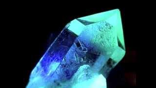 Human Mesh Dance - Nerve Crystal