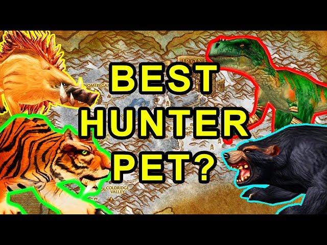 best hunter pet classic wow