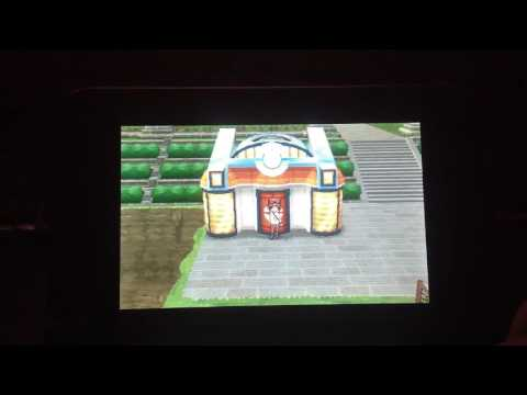 Pokémon X and Y Wonder Trade run