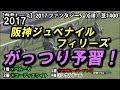 【競馬予想】2017 阪神ジュベナイルF 鉄板軸馬と穴はこの馬!