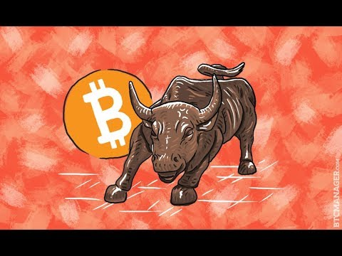 WAR! What is it good for!? Cryptocurrency Bull Runs! that's what! Bitcoin & other crypto news