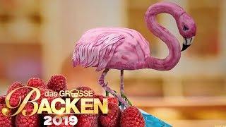 XXL-3D-Kuchen: Tierischer Gravity Cake | Aufgabe | Das große Backen 2019 | SAT.1