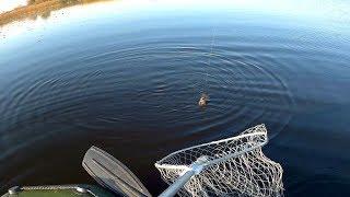 Отчет рыбалки с лодок озеро Святое