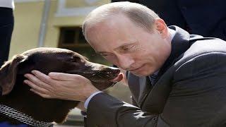 Виктор Шендерович - Полковник и его собака