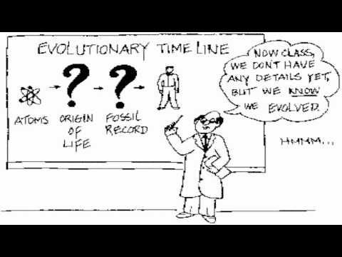 Evolution Activities For High School Biology Students