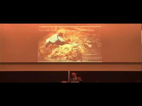David Anthony, Wheeled vehicles, horses, and Indo-European origins