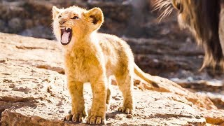 The Lion King 'Baby Simba Learns To Roar' Official Trailer (2019) Disney HD