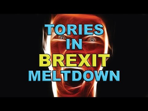 Tories in Meltdown over Brexit Dealings with Labour!