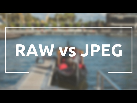 RAW vs JPEG: Which Should You Shoot?
